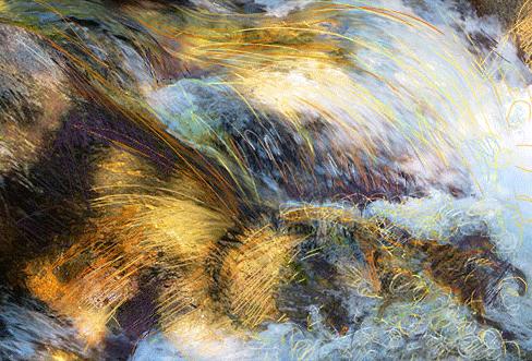 Rapids -image by Linda Naiman